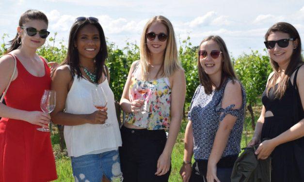 Kulinarisch wandern entlang der Weinblüte