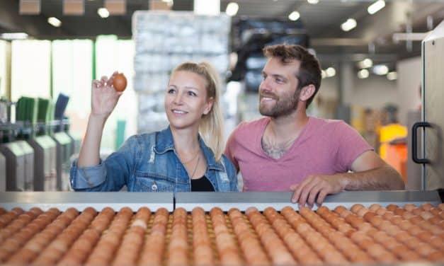 Draßmarkt. Wo der Osterhase für ganz Österreich die Eier holt