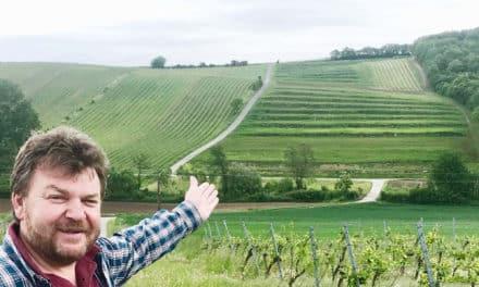 Gesellmann legt Terrassen-Weingarten an