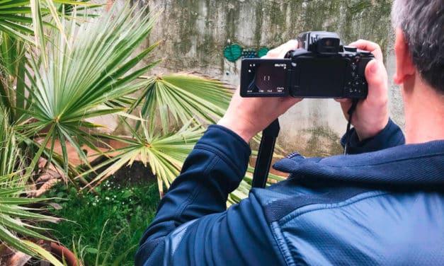 Ibiza-Video: Das sagen die mittelburgenländischen Detektive